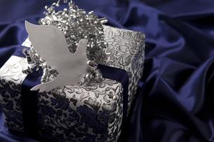 プレゼント箱と鳥の形をしたカードの写真素材 [FYI01285648]