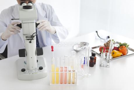 顕微鏡をのぞいている男性研究者の写真素材 [FYI01286730]