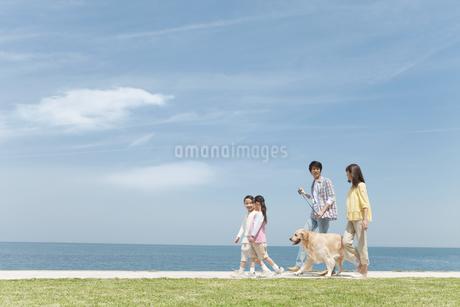 海岸を歩く家族と犬の写真素材 [FYI01287541]