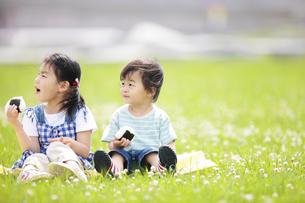 芝生でおにぎりを食べる男の子と女の子の写真素材 [FYI01287567]