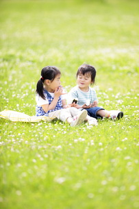 芝生でおにぎりを食べる男の子と女の子の写真素材 [FYI01287856]
