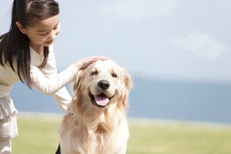 犬を撫でている女の子の写真素材 [FYI01287877]