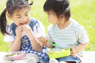 お弁当を食べる男の子と女の子の写真素材 [FYI01287999]