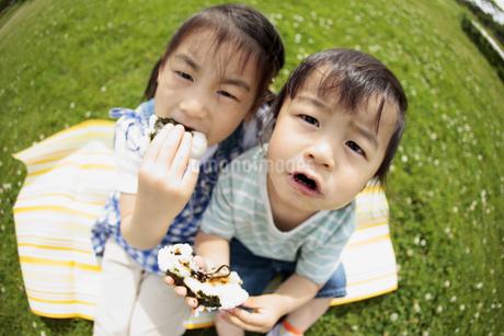 芝生でおにぎりを食べる男の子と女の子の写真素材 [FYI01288101]