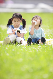 芝生でおにぎりを食べる男の子と女の子の写真素材 [FYI01288246]