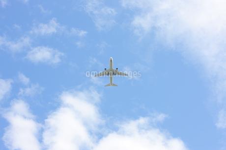 青空と飛行機の写真素材 [FYI01289216]