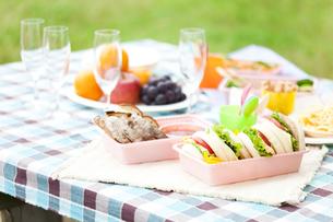 ピクニックの食事の写真素材 [FYI01289790]