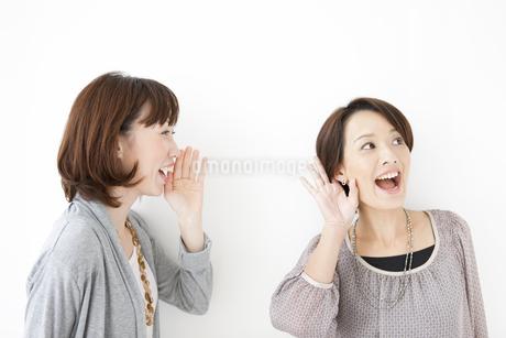 内緒話をする女性2人の写真素材 [FYI01290079]