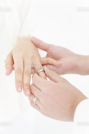 女性の指に指輪をはめる男性の手の写真素材 [FYI01291255]