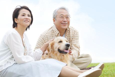 遠くを見ている中高年夫婦と犬の写真素材 [FYI01292103]
