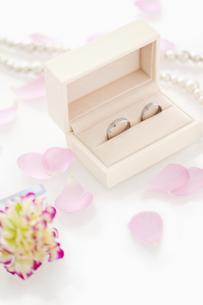 結婚指輪の写真素材 [FYI01292108]