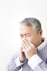 鼻をかむシニア男性の写真素材 [FYI01292352]
