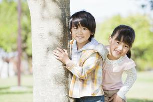 木の横に立つ男の子と女の子の写真素材 [FYI01292367]