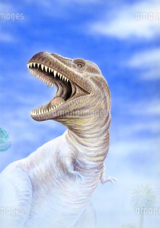霧の中のティラノサウルスのイラスト素材 [FYI01292493]