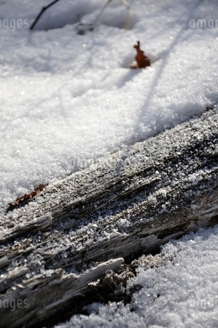 雪の山地の写真素材 [FYI01292502]