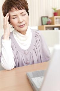こめかみを押さえている中高年女性の写真素材 [FYI01292702]