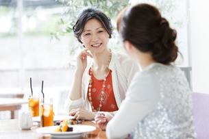 カフェで会話をする女性の写真素材 [FYI01293452]