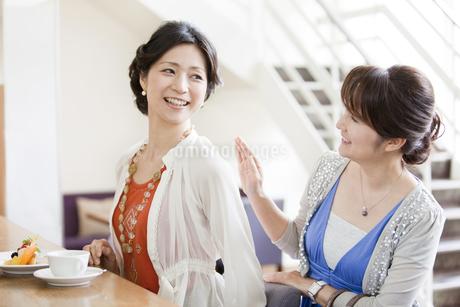 カフェで会話をする女性の写真素材 [FYI01293494]