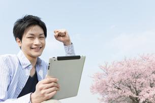 桜とタプレットPCを持つ男性の写真素材 [FYI01293805]