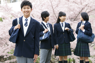 男女学生4人の写真素材 [FYI01294263]
