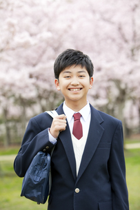 桜と男子学生の写真素材 [FYI01294279]