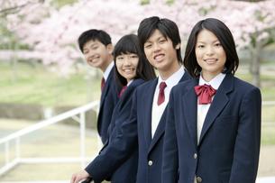 男女学生4人の写真素材 [FYI01294313]