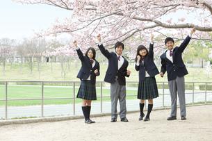 ガッツポーズをする男女学生4人の写真素材 [FYI01294323]