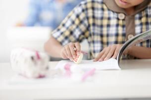 勉強をする小学生の手元の写真素材 [FYI01295222]