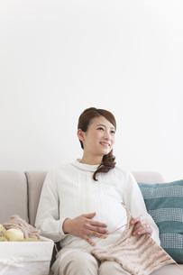編み物をする妊婦の写真素材 [FYI01295641]