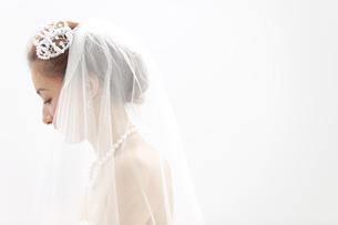 ベールを被っている新婦の写真素材 [FYI01296158]