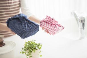 お弁当を差し出す女性の手元の写真素材 [FYI01296260]