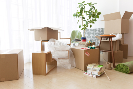 引っ越し作業中の部屋イメージの写真素材 [FYI01297162]
