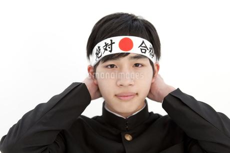 鉢巻きを結ぶ男子中高生の写真素材 [FYI01299779]