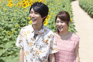 ひまわり畑と笑顔のカップルの写真素材 [FYI01299851]