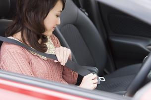 シートベルトを締める女性の写真素材 [FYI01301269]