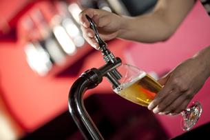 サーバーでビールを注ぐ手の写真素材 [FYI01301322]