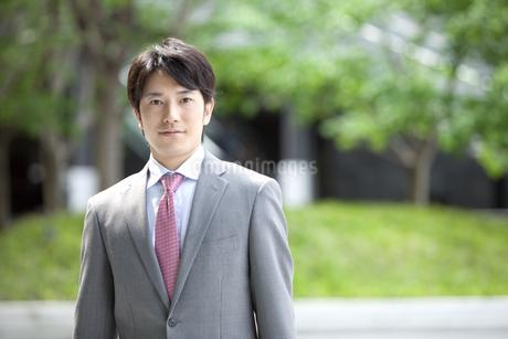 ほほえむビジネスマンの写真素材 [FYI01301512]