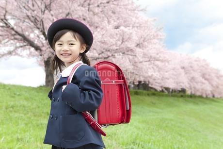 桜と笑顔の女の子の写真素材 [FYI01302137]