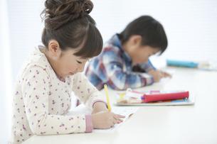 勉強する女の子の写真素材 [FYI01302636]
