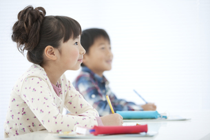 勉強する女の子の写真素材 [FYI01302662]
