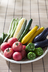夏野菜の写真素材 [FYI01302771]