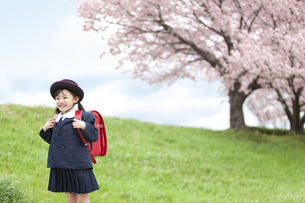 桜と笑顔の女の子の写真素材 [FYI01302945]