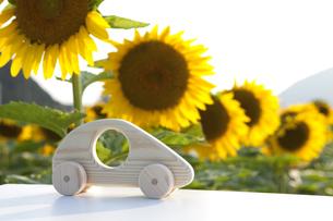 車のおもちゃとひまわり畑の写真素材 [FYI01303750]