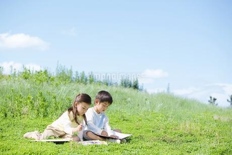 お絵かきをする子供たちの写真素材 [FYI01305734]