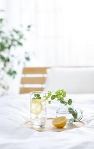 炭酸水と花瓶がある部屋の写真素材 [FYI01307485]