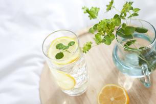 炭酸水と花瓶の写真素材 [FYI01307540]