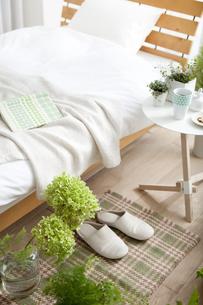 植物がある寝室イメージの写真素材 [FYI01307719]
