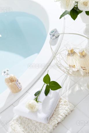 バスルームイメージの写真素材 [FYI01307830]