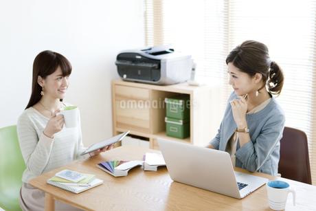 打ち合わせをする女性2人の写真素材 [FYI01307860]