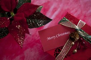 ポインセチアとクリスマスプレゼントの写真素材 [FYI01309229]